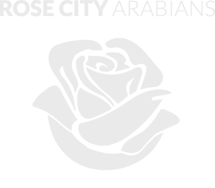 Rose city arabians footer logo